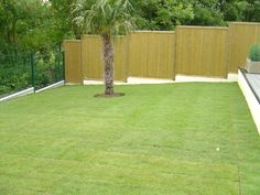 Tongue and Groove Luxury Fence Panels with ultimate privacy. #TongueAndGrooveFence #fencing #garden #home http://www.jacksons-fencing.co.uk/fencing/fencing-panels/tongue-and-groove-effect/fencing-panels-tongue-groove-effect.aspx?agid=597