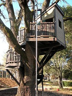 my boys like the idea of creating different levels in their tree house