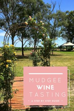 Wine tasting in Mudgee | Mudgee Wine Region | Wine tasting in Mudgee Wine Region | Mudgee Wine Region Infographic | Things To Do In Australia | Must Visit In Australia | Best Wine Region | Wine Region | Information About Wine Tasting | Visiting Cellar Doors | Visiting Wineries | Mudgee Wineries | Australia Wineries | Cellar Doors In Mudgee | Cellar Doors In Australia | Travel For Wine | Wine Travel | Travel Blogger | Wine Tasting | Ultimate Guide | Ultimate Guide To Wine