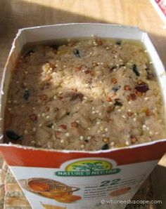 Feed your fine feathered friends with an easy to make Homemade Wild Bird Suet. Easy to make, you may never buy from the store again. Suet Bird Feeder, Bird House Feeder, Squirrel Feeder, Homemade Bird Houses, Homemade Bird Feeders, Suet Recipe, Funny Bird, Suet Cakes, Wild Birds Unlimited