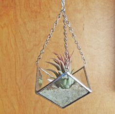 Stained Glass Beveled Three Point Shaped Hanging Planter for Air Plants