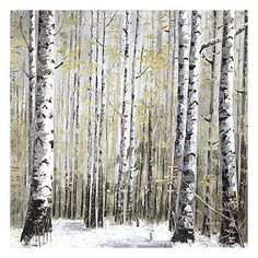 Winter dreams Birch Forest, Let It Snow, Winter Wonderland, Trees, Sky, Curtains, Shower, Nature, Prints