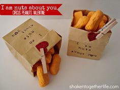 """""""God is nuts about you"""" peanuts from www.shakentogetherlife.com"""