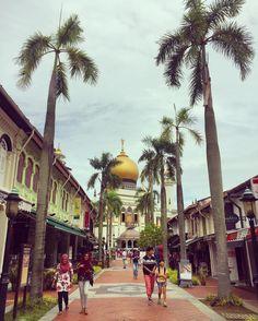 Village Hotel, 100 Happy Days, Singapore, Street View, Explore, Instagram Posts, Travel, Viajes, Destinations