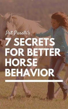 Seven secrets for better horse behavior from Pat Parelli. | Horse training tips