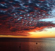 Hatteras Island - A collection of photos taken by Kurt Kessler with Outer Beaches Realty