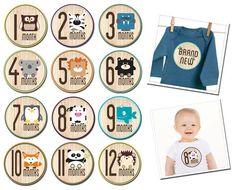Aloe Tree Baby Milestone stickers   Boutique Brands