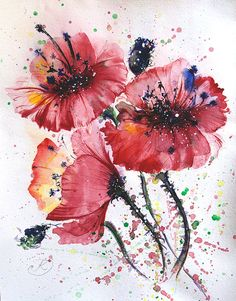 Watercolour painting Poppies painting Original poppy by coloribli