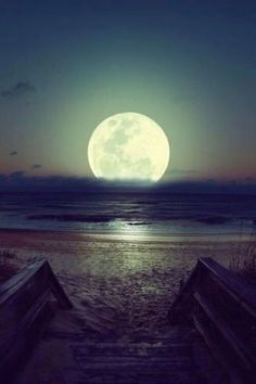 Moonlit beach | Image via theberry.com