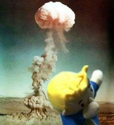 Fallout 76 leaked photo
