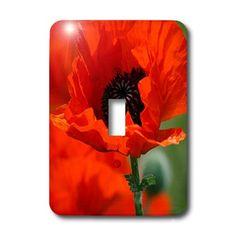3dRose lsp_29205_1 Beautiful Red Poppy Single Toggle Switch 3dRose http://www.amazon.com/dp/B005K0SE9Y/ref=cm_sw_r_pi_dp_kZfNvb12GRHEG