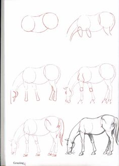 How-To-Draw-Horses - ~*Horse Heaven*~                                                                                                                                                                                 More