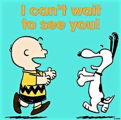 Peanuts - Charlie Brown and Snoopy Snoopy Love, Snoopy And Woodstock, Snoopy Shop, Charlie Brown Quotes, Charlie Brown And Snoopy, Peanuts Quotes, Snoopy Quotes, Peanuts Cartoon, Peanuts Snoopy