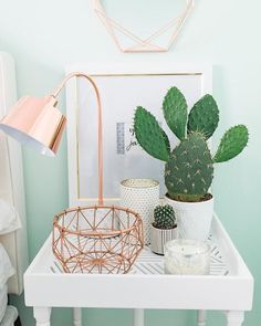 Minty Fresh: Even though they look kinda deadly, cacti popped up on nightstands all over Pinterest and Insta. They're perfect for small spaces because the ...
