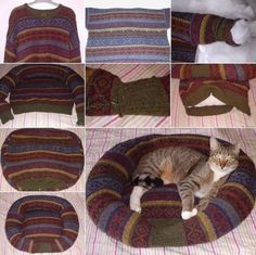 Neste inverno seus animais podem ficar confortáveis e quentinhos com uma cama feita de blusa