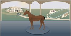 CryptoHorse is the first blockchain based horse breeding game. With this dapp you can exchange and breed crypto horses, later there will be horse races