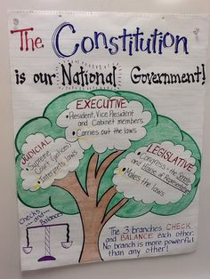 My Constitution anchor chart 5th grade