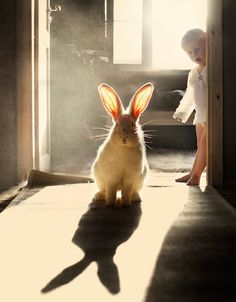 Bunny and child. http://www.photographytalk.com/photos/316392