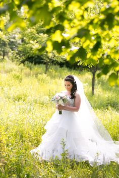Independence Grove Wedding Photographer |Libertyville Wedding Photographer
