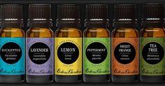 Essential Oils Might Be The New Antibiotics►►http://herbs-info.com/blog/essential-oils-might-be-the-new-antibiotics/?i=p