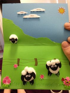 Sheep birthday card for a very special aunty.