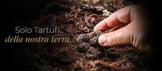 Home page - Vendita online - Ranca Tartufi Truffles, Ranch, Rings For Men, Guest Ranch, Men Rings, Cattle Ranch, Truffle, Mushrooms