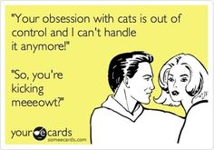 Your obsession with cats... Lolol this will be Daniel and I one day :p