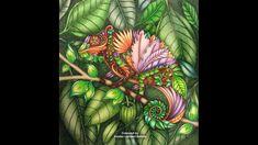 Magical Jungle Collection Johanna Basford SGG 10