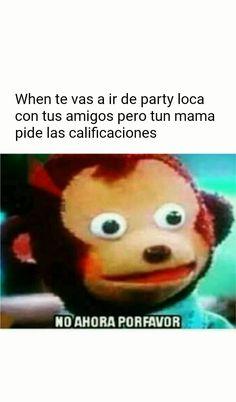 Pedro el mono memes