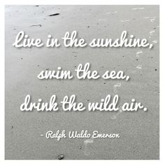 20 Literary Inspired Quotes About Summer- BlondevsBooks Summer Quotes, Quotes About Summer, Artsy Captions, Sand Quotes, Literary Quotes, Get One, Authors, Favorite Quotes, Positive Quotes