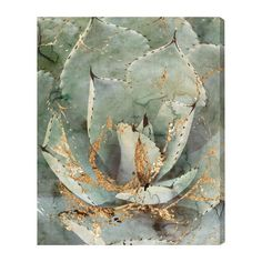 'Golden Succulent' Graphic Art on Wrapped Canvas