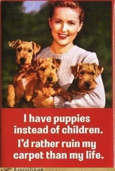 I have puppies instead of Children. I'd rather ruin my carpet then my life. #childfree
