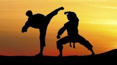 Art martial, sport de combat