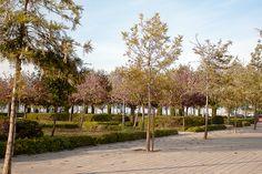 #Benicalap #Valencia #JuanXXIII #Avenidas #Ciudad #Barrio #Parques #Entorno