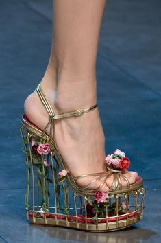 0766a91b2e2 Dolce E Gabbana Fall 2013 hey look. Birdcage shoes - show mike these  HIDEOUS!
