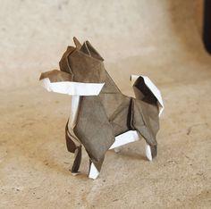 Origami Little Shiba Inu by Lonely-Shiba