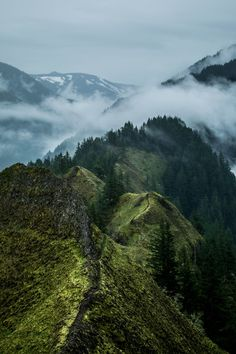 Munra Point Trail, Cascade Locks (US)   by Patrick Marré This photo as wallpaper on your smartphone? Get the app now!
