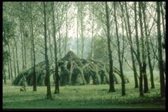 Auerworld willow palace, Germany