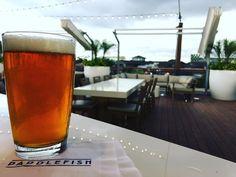 Jai Alai with a view @paddlefishorl in @disneysprings Watching the sun set on deck in @disneysprings The views from up here are#craftbeer at #waltdisneyworld is wonderfulNeed to to a #beer crawl in #disneysprings
