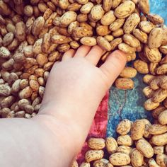 Sensory play for baby! 5 month old activity  Shallow dish and dry beans for them to feel with their feet! CAUTION: DO NOT ALLOW CHILD TO BE LEFT ALONE DURING THIS ACTIVITY. CHOKING HAZARD!!!