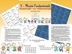 Autotroph vs Heterotroph Sorting Cards: 5-Minute ...
