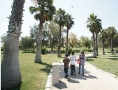 10 parques en Santiago