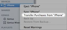 "Transferring purchases from your iPad/device to a computer - the answer to to HOW to deal with the msg: ""There are purchased items on the iPad ""So's iPad"" that have not been transferred to your iTunes library. You should transfer these items to your iTunes library before updating this iPad. Are you sure you want to continue?"""