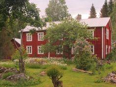 Jukka teki suuren elämänmuutoksen ja muutti takaisin lapsuudenkotiinsa, maalaismaisemiin Ylistaroon.