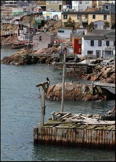 This photo from Newfoundland, Atlantic is titled 'Lower Battery Stages'. Newfoundland Canada, Newfoundland And Labrador, O Canada, Canada Travel, Saint John New Brunswick, Meanwhile In Canada, Wild Weather, Atlantic Canada, Prince Edward Island