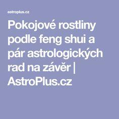 Pokojové rostliny podle feng shui a pár astrologických rad na závěr | AstroPlus.cz