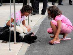 Bo with Sasha and Malia Obama