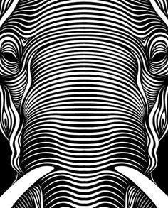 Line element-cross contour lines, elephant created purely from lines. I chose this one because it clearly shows all line.
