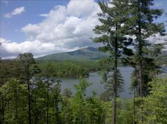 House vacation rental in Nebo from VRBO.com! #vacation #rental #travel #vrbo   July pretty open