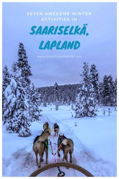 When you visit Finnish Lapland, there are plenty of activites that you should not miss. Here are seven awesome winter activities in Saariselkä, Lapland. Christmas Destinations, Finland Travel, Cross Country Skiing, Winter Activities, World Traveler, Travel Around The World, Northern Lights, Bucket, Adventure